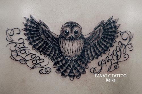 Owl Tattoo フクロウタトゥー/Keika_FanaticTattoo