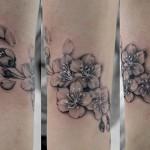 桜のブラック&グレータトゥー,Tattoo,刺青・タトゥースタジオ 女性彫師 恵華-Keika-