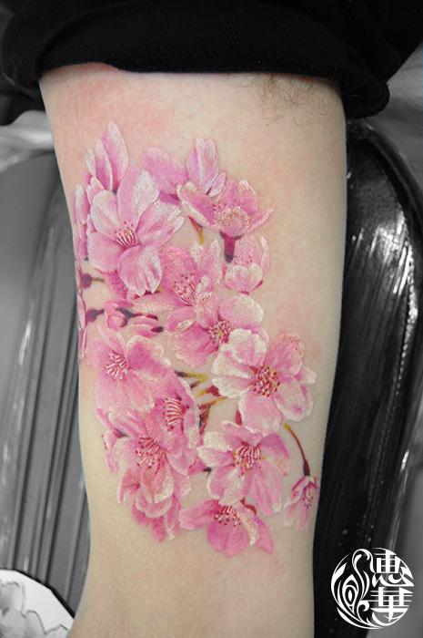 桜のタトゥー,Cherryblossom,Flower Tattoo,刺青・タトゥースタジオ 女性彫師 恵華-Keika-