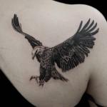 ワシのブラック&グレータトゥー,Eagle Tattoo,刺青・タトゥースタジオ 女性彫師 恵華-Keika-